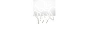 London Escort Girls logo